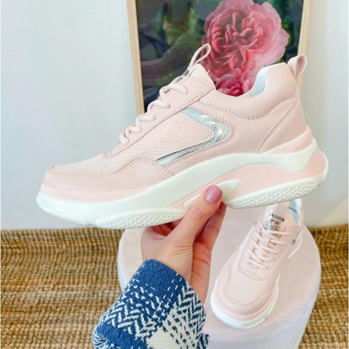 Sporta apavi  - pūdera